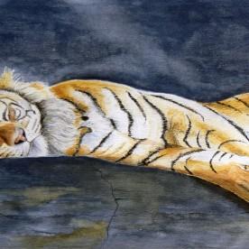 Slapende tijger