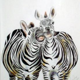 Zebra's  2