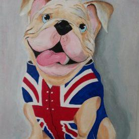 Engelse Bulldog 50h x 40h